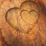 Zwei Herzen in den Baumstumpf geschnitzt.