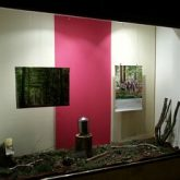 Schaufenster dekoriert mit Waldboden, in der Mitte eine Urne auf einem Baumstumpf