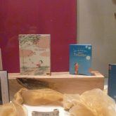 Schaufenster dekoriert mit Kinderbüchern